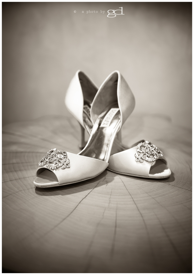 Bridal Shoes © a photo by gd